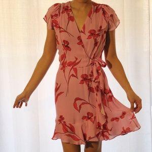 NWOT Parker Pink / Red Floral Mini Dress